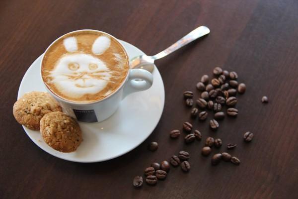 Zawiercie: Cukiernia i kawiarnia Skała